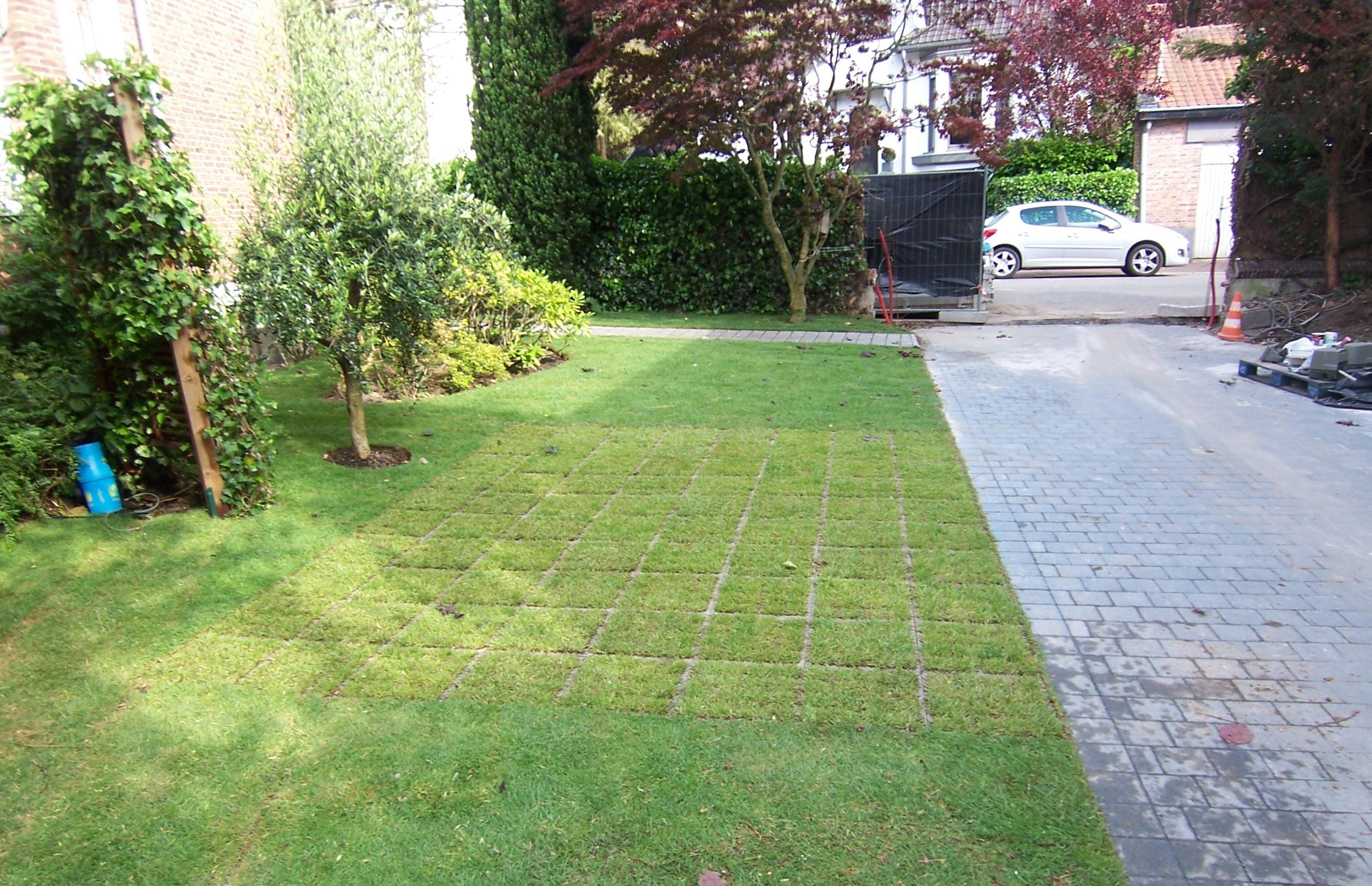 aménagement de jardin lille : après